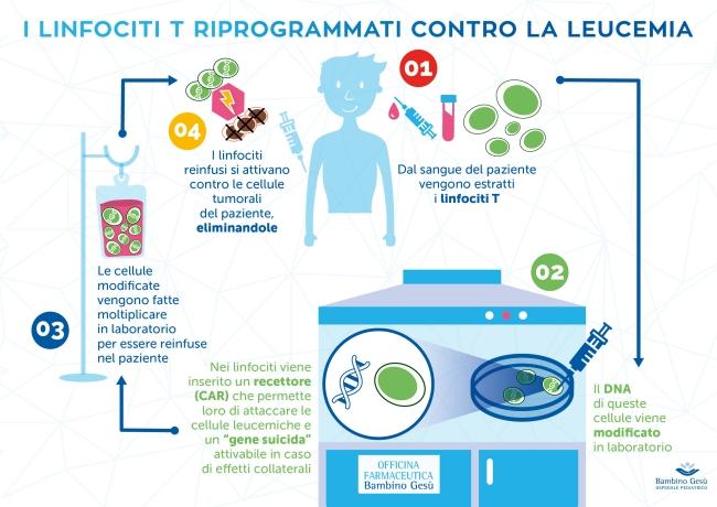 Infografica manipolazione dei linfociti T